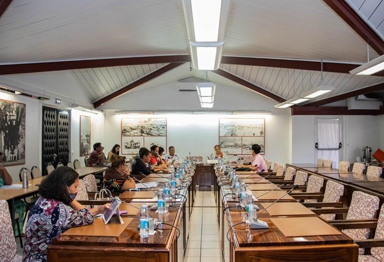 Dix-sept projets d'arrêté étudiés en commission de contrôle budgétaire et financier de l'assemblée de la Polynésie française