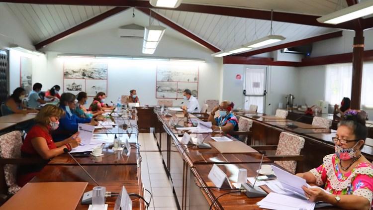 Douze projets d'arrêté étudiés en commission de contrôle budgétaire et financier de l'assemblée de la Polynésie française