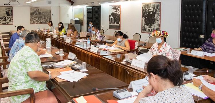 Un projet de loi du pays et un projet de délibération examinés par la commission du tourisme