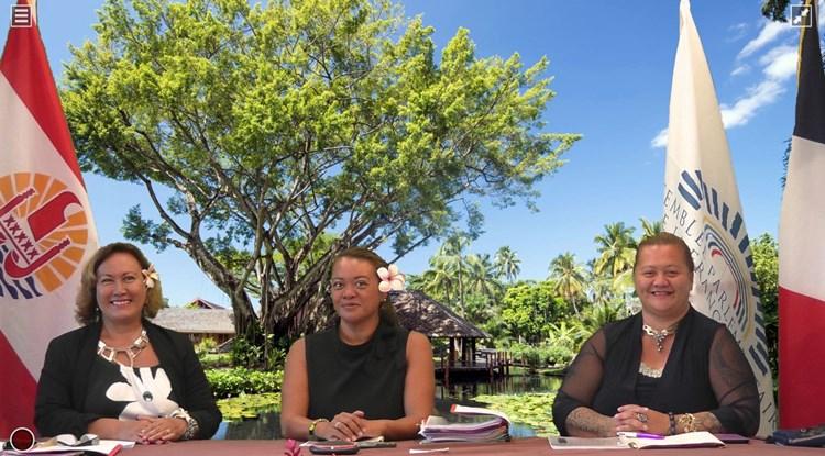 Réunion du Réseau des femmes parlementaires de  l'Assemblée parlementaire de la francophonie