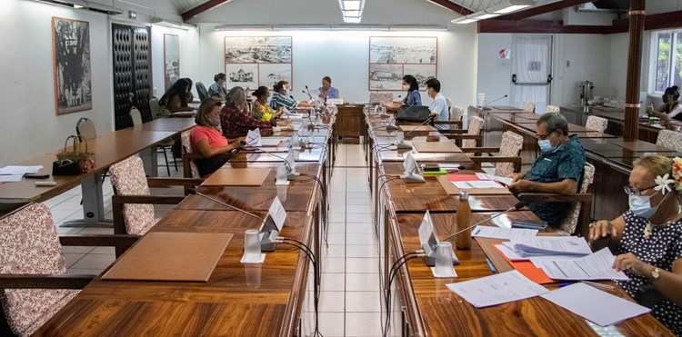 Vingt-cinq projets d'arrêté étudiés en commission de contrôle budgétaire et financier de l'assemblée de la Polynésie française